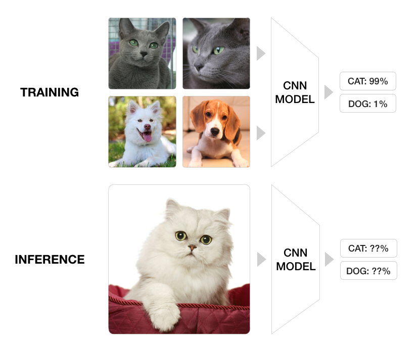 CAT vs. DOG classifier